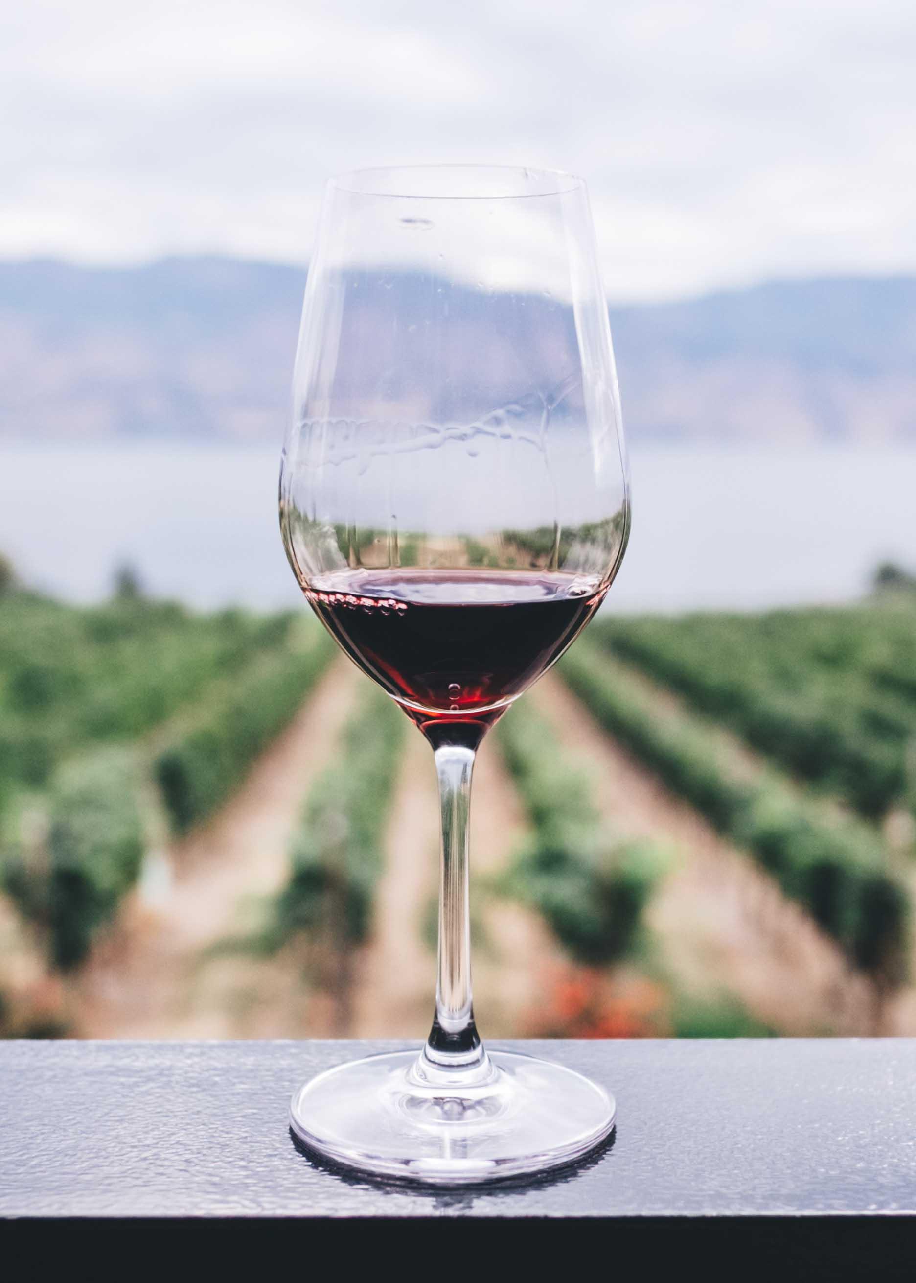 12 Degrees Achat de vin - Qui sommes nous ?