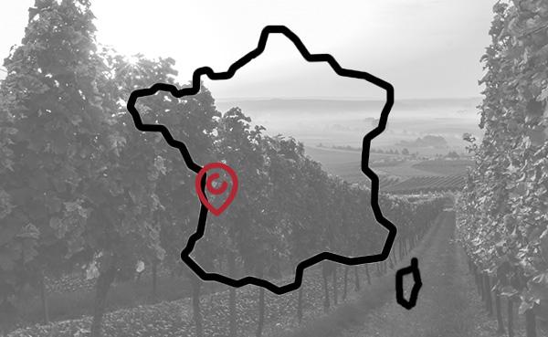 Achat vin de Bordeaux - 12 Degrees votre caviste